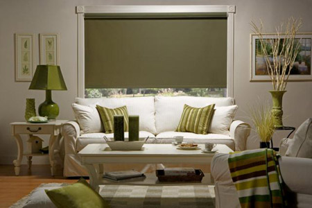 Roller Shades Gallery Window Shade Treatment Photos